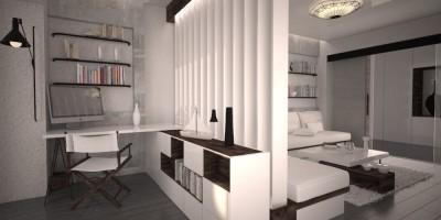 Living minimalist suedez design interior