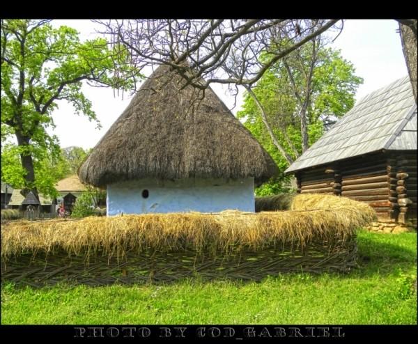Casa cu acoperis de stuf