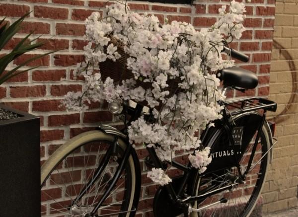 bicicleta vintage sic
