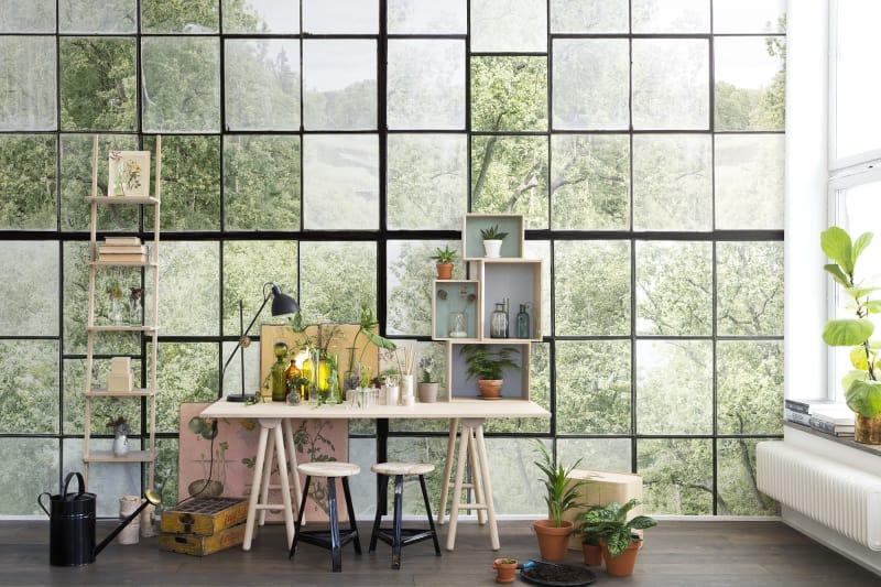 Fototapet Rebel Walls cu ferestre prin care se vede o padure