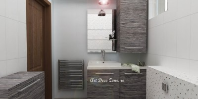 Idei design interior Baie